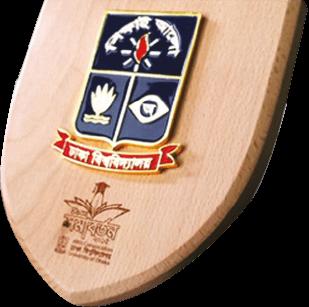 Crest Award & Medal-03